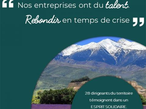 MBD consulting Livre collaboratif